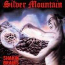 5907785034235 : SILVER MOUNTAIN : SHAKIN' BRAINS